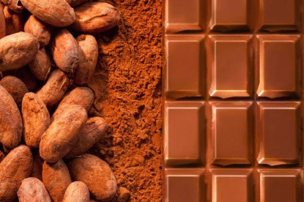 Chocolate Bean & Block